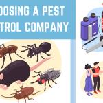 Choosing A Pest Control Company