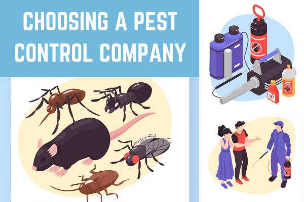 Need To Choose A Pest Control Company? Don't Make These Mistakes!