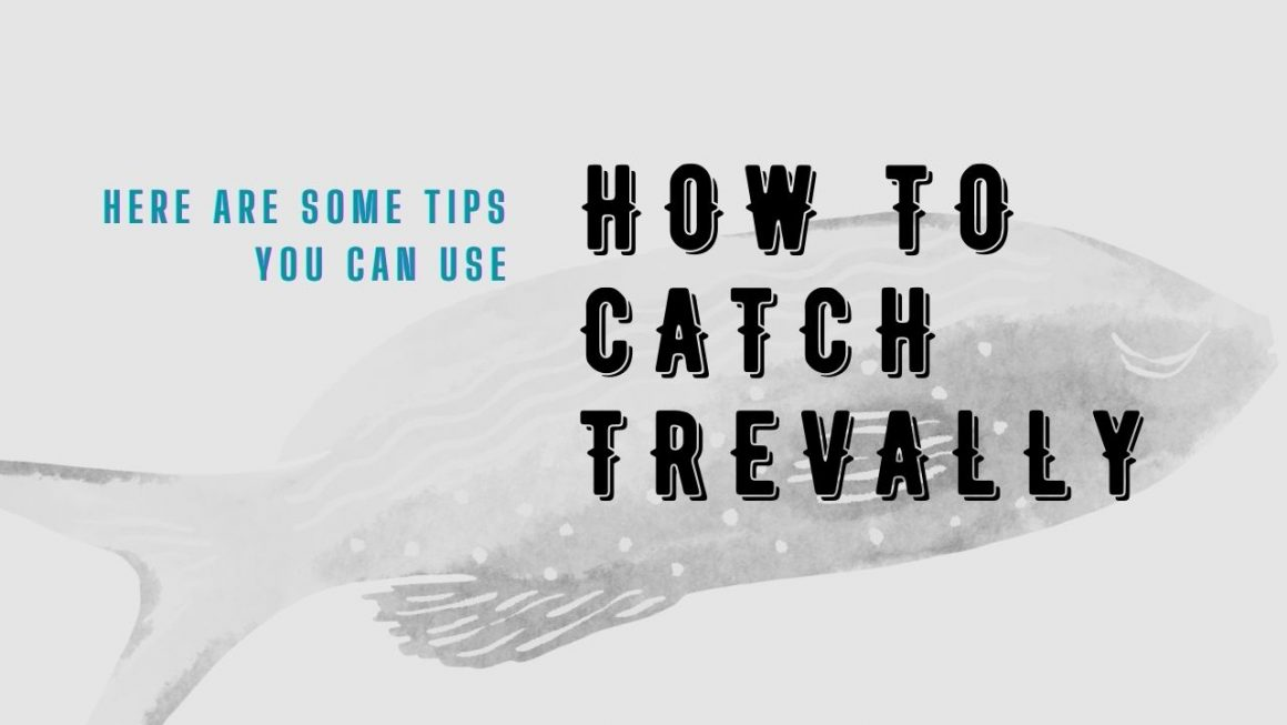 How To Catch Trevally